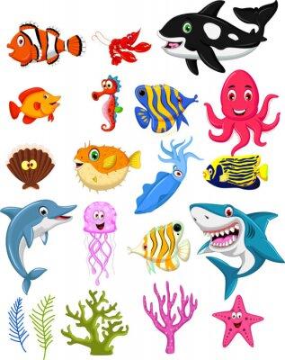 Poster sea life cartoon collection