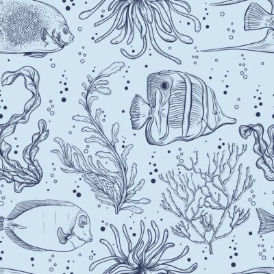 Poster Seamless pattern with tropical fish, marine plants and seaweed. Vintage hand drawn vector illustration marine life. Design for summer beach, decorations,print,pattern fill, web surface background