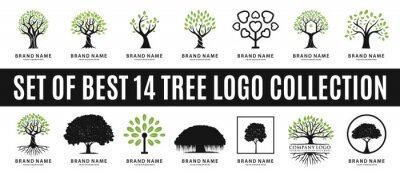 Poster set of best tree logo collections, perfect for company logo or branding.