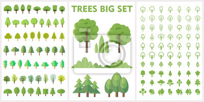 Poster Set of forest and park trees for nature design