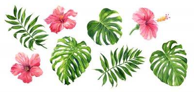 Poster Set tropische Blätter und Blumen: grüne Palme Neanta, Monstera, Hibiskus. Handgemalte Aquarellillustration lokalisiert auf Weiß.