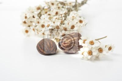 Sheabutter Nüsse und Blumen