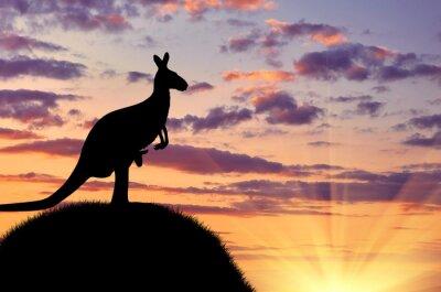 Poster Silhouette eines Kängurus mit einem Baby