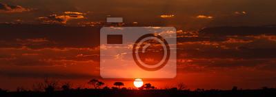 Poster Sonnenuntergang - Chobe NP Botsuana, Afrika