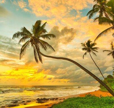 Poster Sonnenuntergang über dem Meer