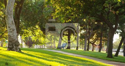Poster Sonnigen Park