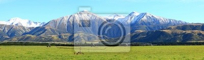 Southern Alps panorama