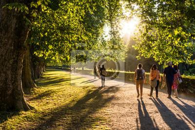 Poster Spaziergänger im Park in der Abendsonne