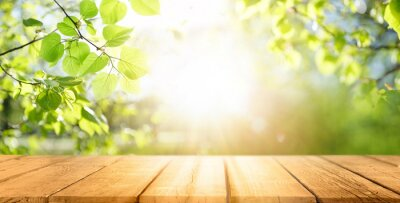 Poster Spring beautiful background with green juicy young foliage and empty wooden table in nature outdoor. Natural template with Beauty bokeh and sunlight.