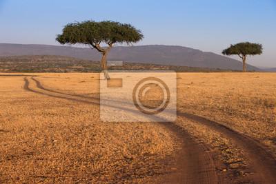 Straße im Masai Mara Nationalpark Kenia