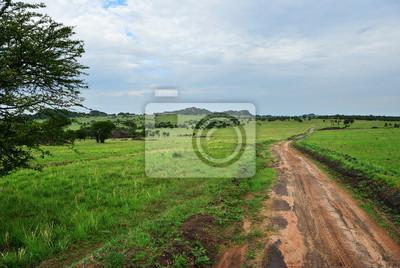 Straße in Serengeti, Tansania