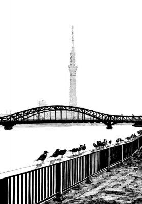 Poster Sumida Blick auf die Brücke