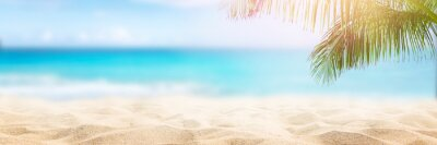 Poster Sunny tropical beach with palm trees