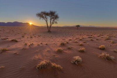Sunset in the Namib Desert