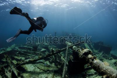 Poster Taucher, der über einem Schiffswrack schwimmt