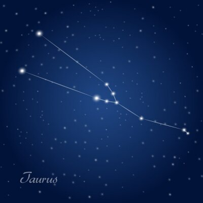Poster Taurus constellation zodiac sign at starry night sky