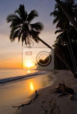 The beach of a tropical island at dawn