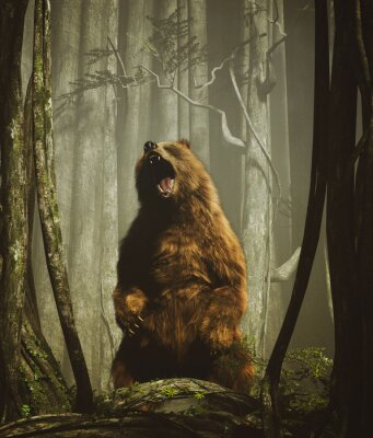 Poster The forest's tales,Brown grizzly bear in magical forest,3d illustration