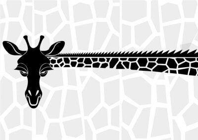 Poster Tierwelt