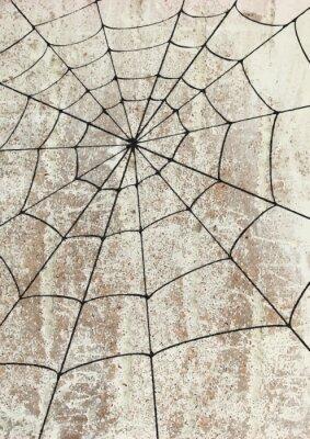 Poster Toile surd'araignée un mur. Straßenkunst