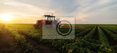 Poster Tractor spraying soybean field in sunset