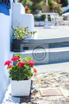 Traditionelle griechische weißen Blumentopf mit roten Blumen, Santorini