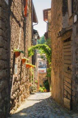 Poster Traditionelle italienische Häuser