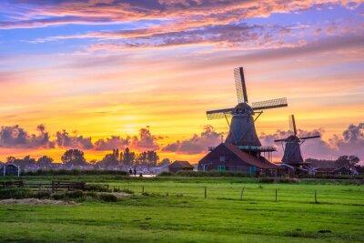 Poster Traditionelles Dorf mit niederländischen Windmühlen und Fluss bei Sonnenuntergang, Holland, Niederlande.