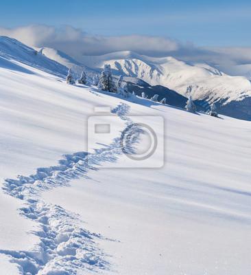 Trail in den schneebedeckten Bergen im Winter