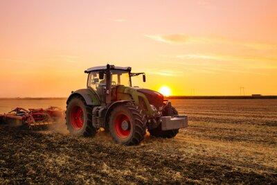 Poster Traktor auf dem Gerstenfeld bei Sonnenuntergang.
