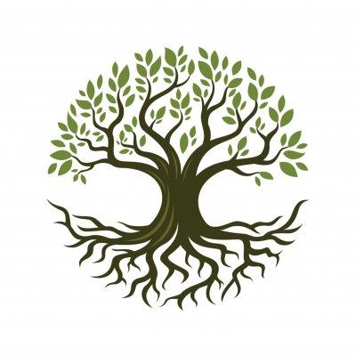 Poster Tree root design illustration