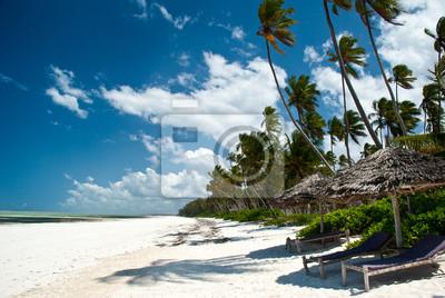 Trobical Strand in Zanzibar