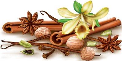 Poster Trockene aromatische Gewürze