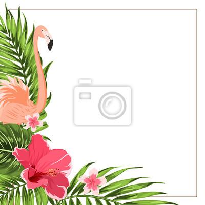 Tropische exotische grüne ecke rand rahmen vorlage. flamingo ...