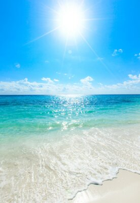 Poster Tropischen Meer