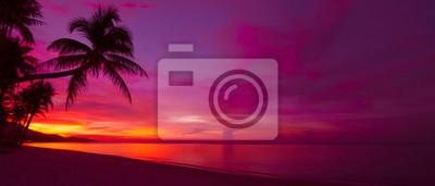 Poster Tropischer Sonnenuntergang mit Palme Silhouette Panorama