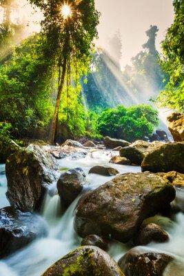 Poster Tropischer Wasserfall