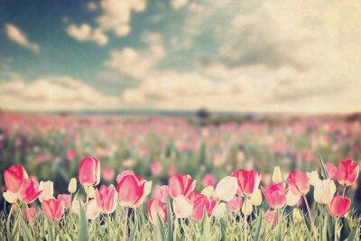 Poster Tulip Blumen Wiese Jahrgang
