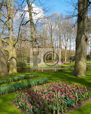 Tulpengarten in Keukenhof, Niederlande