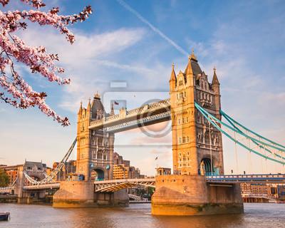 Turmbrücke mit Kirschblüte, London