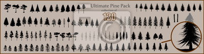 Poster Ultimate Pine collection, 120 detailed, different tree vectors