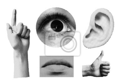 Poster Universal Halftone Clip art Set. Dotted Human Body Part