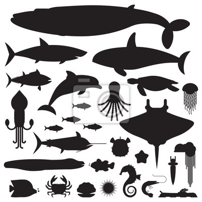 Unterwasser-tiere und meer-kreaturen logo oder etiketten-vorlagen ...