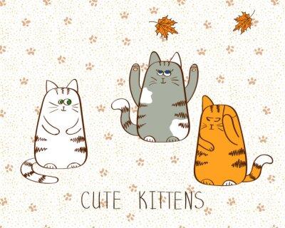 Poster Vector illustration von drei cute doodle Kätzchen.