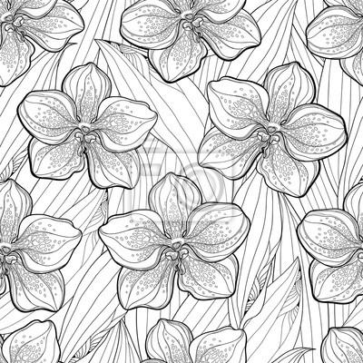 Erfreut Tropische Blumen Malvorlagen Fotos - Ideen färben - blsbooks.com