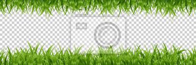 Poster Vector realistische isoliert grüne Gras Grenzen für Dekoration und Abdeckung auf dem transparenten Hintergrund.