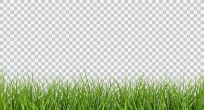 Poster Vektor hellgrüne realistische nahtlose Grasgrenze lokalisiert auf transparentem Hintergrund
