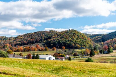 Poster View of red maple trees and white farm houses in appalachian mountains in Monterey, Highland County, Virginia