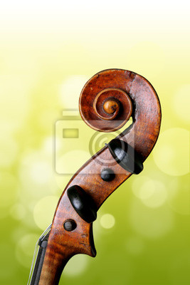Violin peg box and scroll on green background.