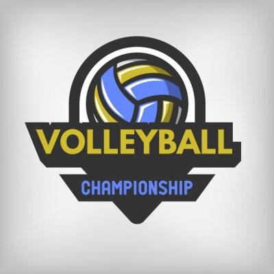 Poster Volleyballsportzeichen.